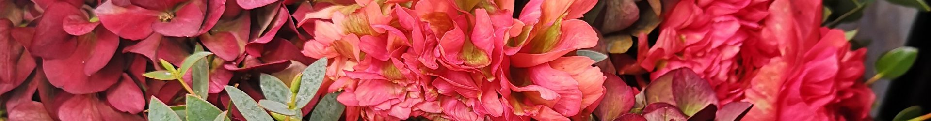 Bouquet per tutti
